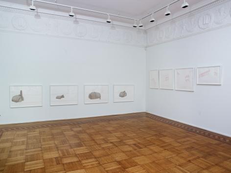 Mariam Suhail Installation view