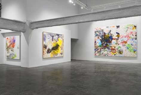 Installation view, 'Oliver Lee Jackson: Take the House', New York, 2020