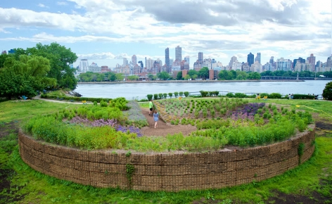Meg Webster Concave Room for Bees, 2016 Site-specific installation 70 feet in diameter created from over 300 cubic yards of soil forming an earthen bowl 5 feet high planted with flowers, herbs and shrubs that attract pollinating creatures