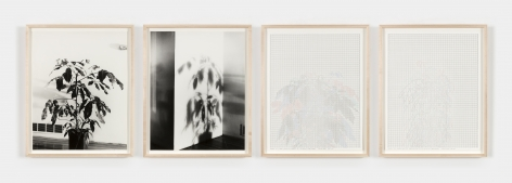 "Charles Gaines' ""Shadows, Set 4,"" 1980-2014, photographs, ink on paper."