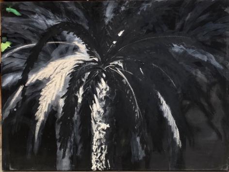 Untitled (Palm Tree), 1996