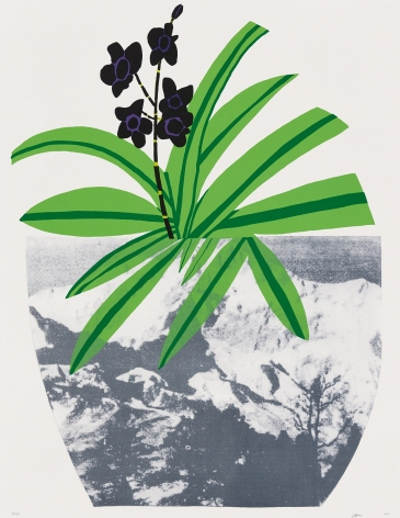 Jonas Wood Untitled, 2014 Lithograph, silkscreen, ed. 50