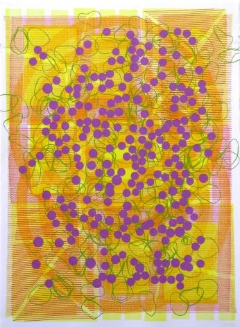 Jason Meadows Hybrids, 2004 Lithographic Monoprint, silkscreen, ed. 131, no. 8 30 x 22 in.