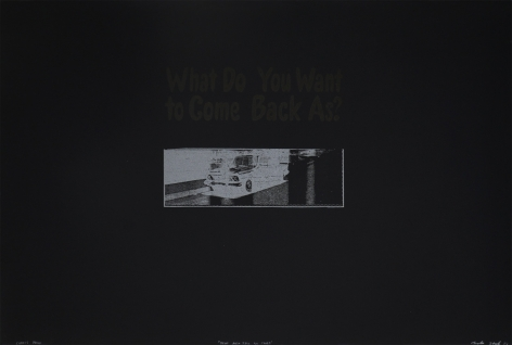 What Do You Want To Come Back As?, 3