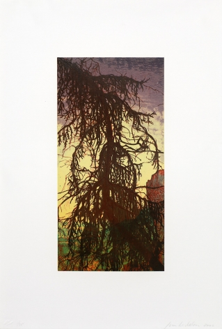 Joan Nelson Untitled (Tree), 1999–2000 Lithograph, silkscreen varnish