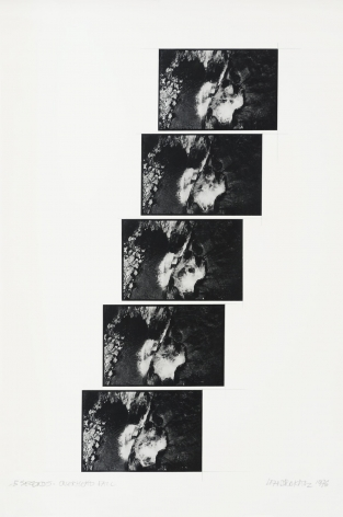 Leandro Katz, Overhead Fall (5 second-study)