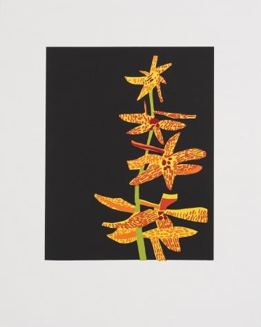 Jonas Wood Untitled, 2015 Silkscreen, ed. 50
