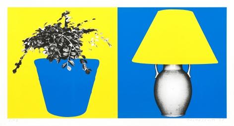 Plant and Lamp (B+Y, Y+B), 1998