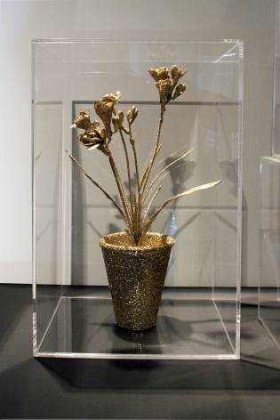 Untitled (flower in a box)