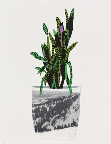 Jonas Wood Untitled, 2014 Lithograph, silkscreen, ed. 50