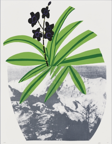 Jonas Wood  Untitled, 2014  Lithograph, silkscreen