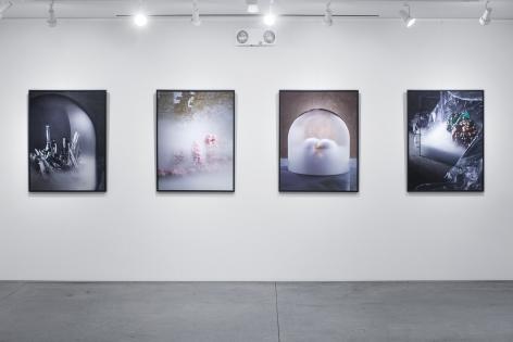 Evan D'Arpino Abiogenesis Gallery View 2019