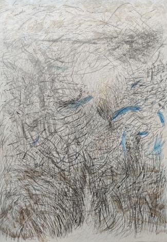 JAYASHREE CHAKRAVARTY Wilderness, 2020