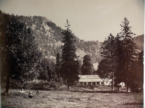 Nainital, view of house in forest