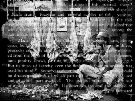Sanjeet Chowdhury UNTITLED DVD (MEAT SERIES)