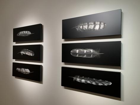 Mitchell Lonas Feathers, 2021