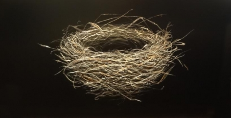 January Nest 2014