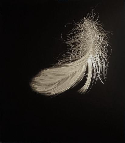 Swan Down 2012