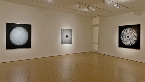 Gallery View 2019