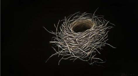 Sparrow Nest incised painted aluminum