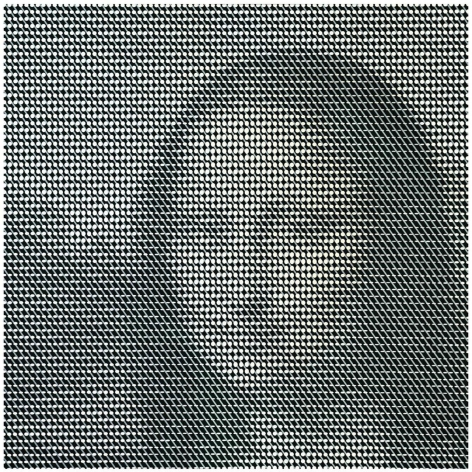 JamesFlynn Mona at the Speed of Light IV, 2019