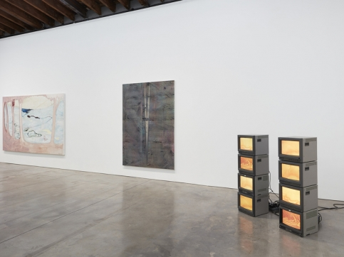 """Installation view of """"A Composite Leviathan: 12 Emerging Artists from China,"""" 2019, at Luhring Augustine Bushwick."""