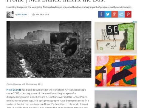 Profile | Nick Brandt: Inherit the Dust - Crave Online