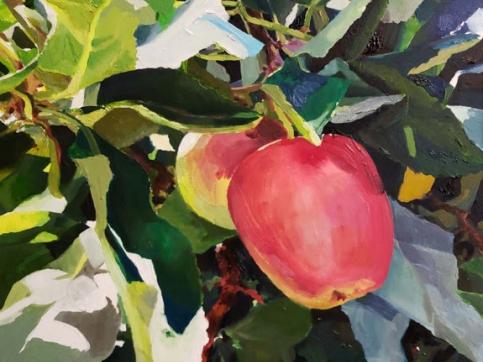 Naomi Chung, Apple Tree, Oil On Canvas