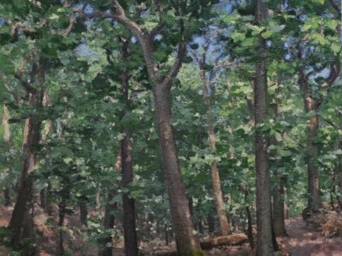 Woodlands, Kurt Moyer, Oil On Canvas