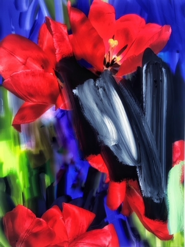 Photograph of red tulips painted over with wide, brightly-coloured brushstrokes by Alexandra Penney