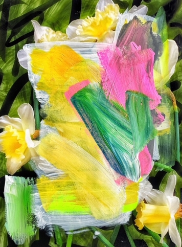 Photograph of daffodil painted over with wide, brightly-coloured brushstrokes by Alexandra Penney