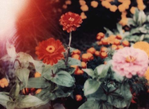 Lynda Benglis: Artforum