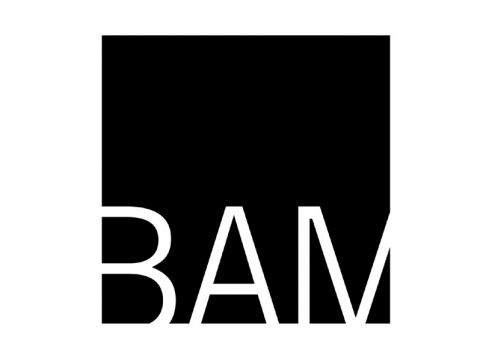 BAM Art Auction