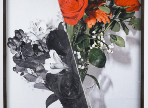 photograph with flowers