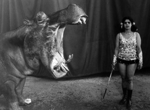 Mary Ellen Mark: Indian Circus