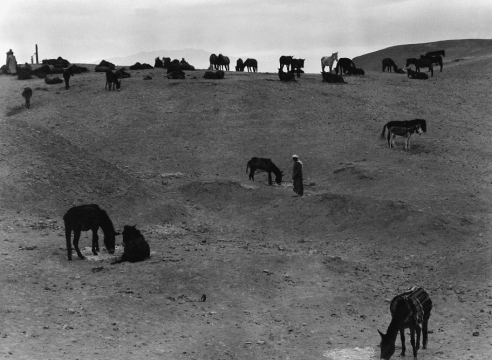 Paul Strand: North Africa