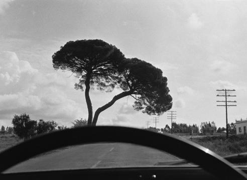 Joel Meyerowitz: European Trip: Photographs from the Car, 1968