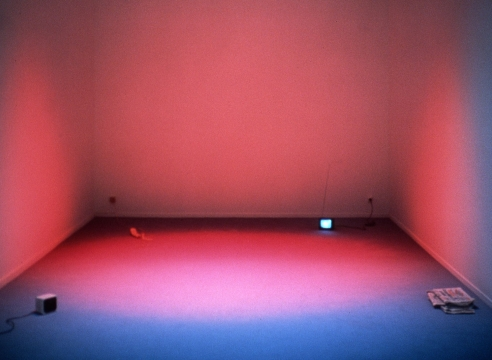 Dominique Gonzalez-Foerster | Welt ohne Außen : Immersive Spaces since the 1960s