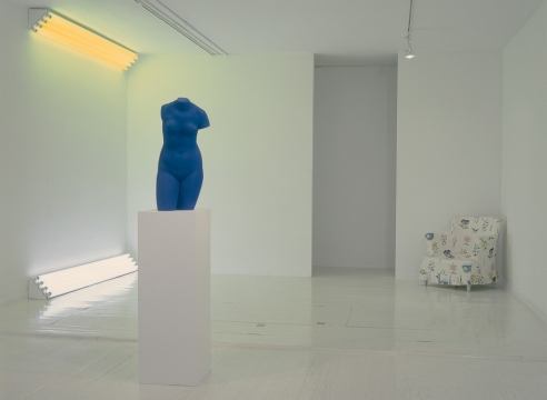 An Installation - Dan Flavin, Robert Gober, Yves Klein