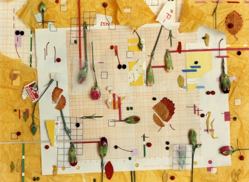 Bruce Wrighton - Still Lifes