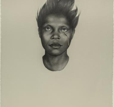 Whitfield Lovell: The Kin Series and Related Works
