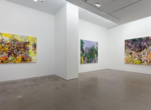 installation of Allison Gildersleeve paintings