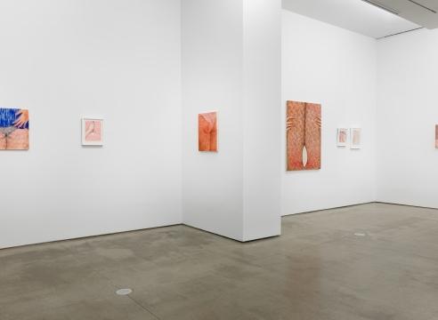"Installation view of Katarina Riesing, ""Razor Burn"""