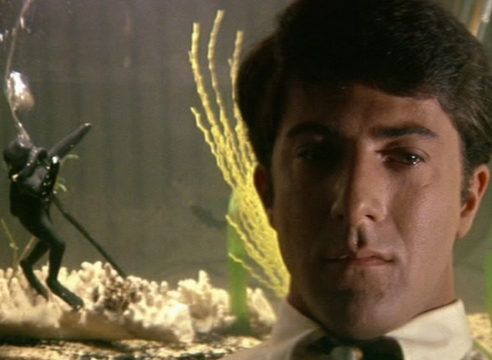 Los Angeles Times - The Graduate