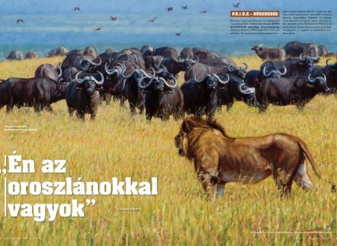 N i m r ó d Safari Magazine-Hungary