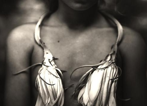 Summer Selections: Elliott Erwitt, Sally Mann, Herb Ritts, August Sander