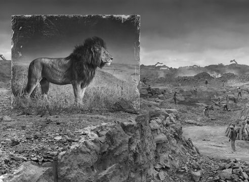 Interview with Nick Brandt in Magnifissance