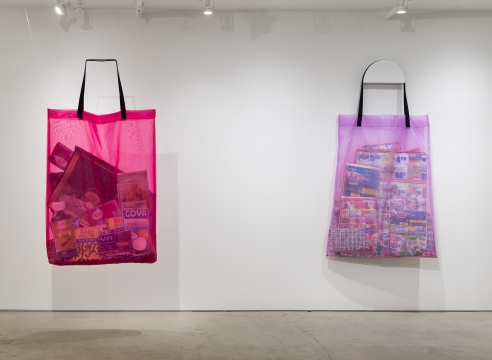 Lucia Hierro ART '13 creates fine art with shopping bags