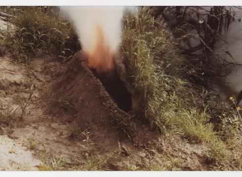 Irrigation Veins: Ana Mendieta and Carolee Schneemann Selected Works 1966 – 1983