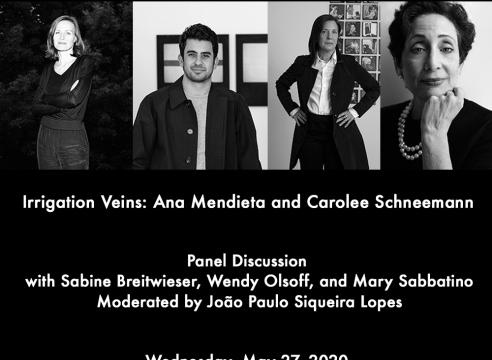 """Panel Discussion """"Irrigation Veins: Ana Mendieta and Carolee Schneemann"""""""